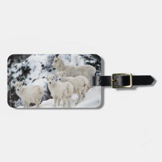 Étiquette À Bagage Famille heureuse de moutons