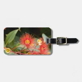 Étiquette À Bagage Gomme fleurissante rouge (ficifolia de Corymbia)