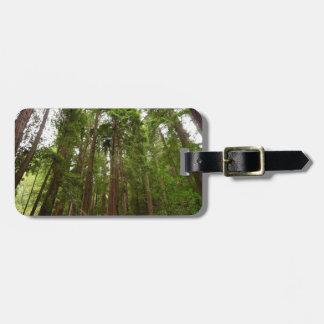 Étiquette À Bagage Jusqu'aux séquoias au monument national en bois de
