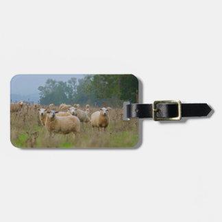 Étiquette À Bagage Moutons