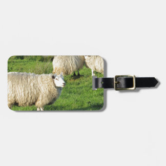 Étiquette À Bagage Moutons irlandais