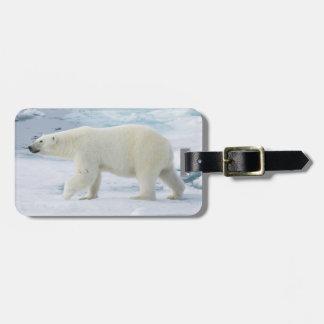 Étiquette À Bagage Ours blanc marchant, Norvège