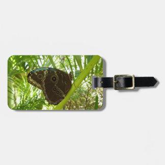 Étiquette À Bagage Photographie tropicale de nature de papillon bleu