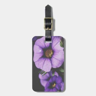 Étiquette À Bagage Pourpre, fleurs de fleur de pétunia de lavande