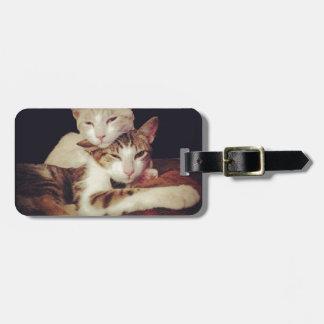 Étiquette À Bagage Quelqu'un à se pencher sur des chats de Kitty