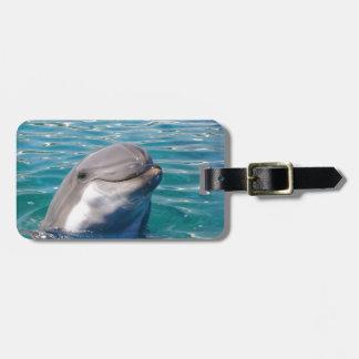 Étiquette À Bagage Sourire de dauphin