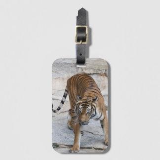 Étiquette À Bagage Tigre AJ 1216