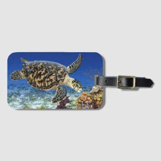 Étiquette À Bagage Tortue de mer de Hawksbill dans l'étiquette de
