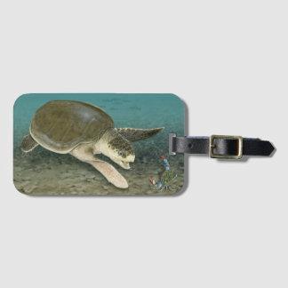 Étiquette À Bagage Tortue de mer de Ridley de Kemp dans l'étiquette