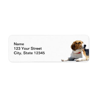 Étiquette Adresse de retour de Brown noir et de chien blanc