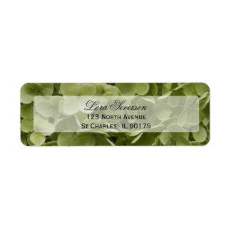 Étiquette Adresse de retour de fleur verte d'hortensia