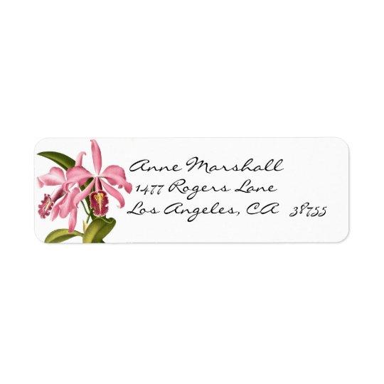 Étiquette botanique vintage d'Avery d'orchidées
