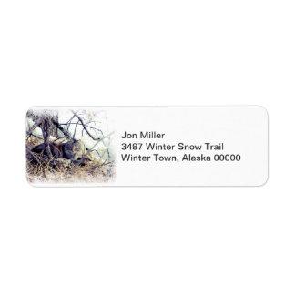 Étiquette Chat de forêt d'hiver dans l'étiquette de neige