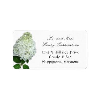 Étiquette de adresse floral d'hortensia blanc des