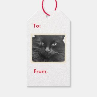 Étiquette de cadeau de chat noir