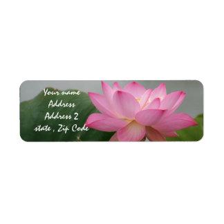 Étiquette Fleur rose de Lotus