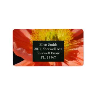 Étiquette Fleur rouge et signification de pavot