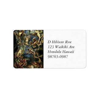 Étiquette Grenouilles et lézards d'amphibies d'Ernst Haeckel