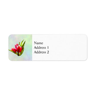 Étiquette Groupe de tulipes rouges
