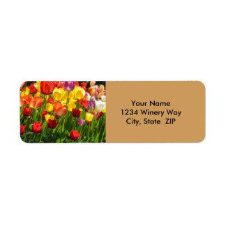Étiquette Jardin de tulipe au printemps