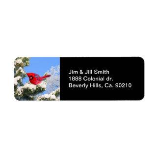 Étiquette Le cardinal rouge doux dans la neige a couvert