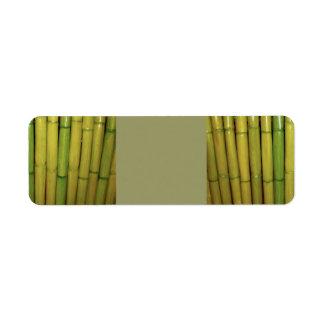 Étiquette Photo botanique de zen du vert | de tiges