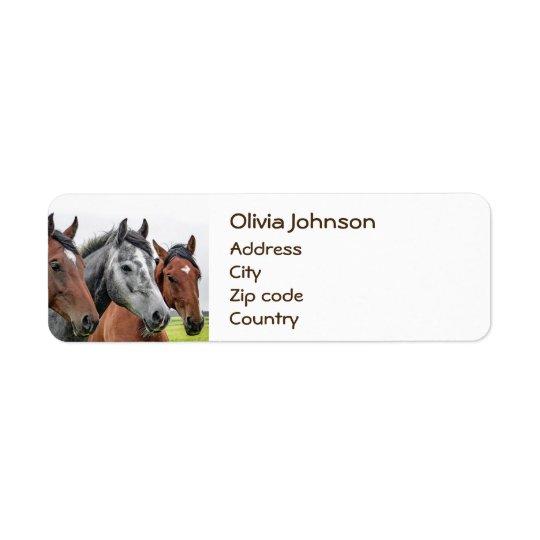 Étiquette Photographie merveilleuse d'étalon de chevaux