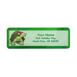 Étiquette Tortue dans le casquette de Père Noël sur le vert