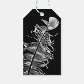 Étiquettes-cadeau Art photographique noir et blanc de plume