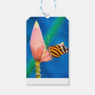 Étiquettes-cadeau Atterrissage de papillon sur la fleur pourpre