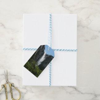 Étiquettes-cadeau Bridalveil tombe au parc national de Yosemite