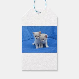 Étiquettes-cadeau Cadeaux de chat