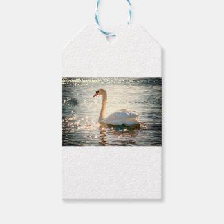 Étiquettes-cadeau Cygne sur le lac