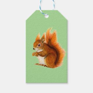 Étiquettes-cadeau Écureuil rouge peint dans l'art de faune