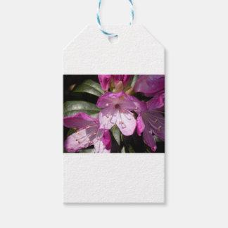 Étiquettes-cadeau Fleur rose