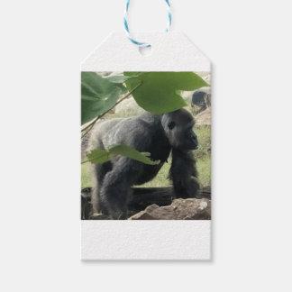Étiquettes-cadeau Gorille de Silverback
