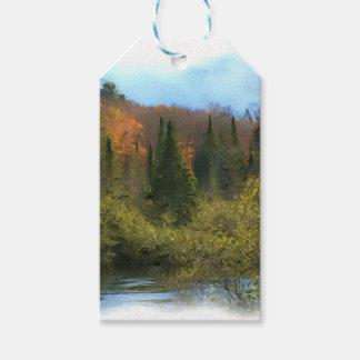 Étiquettes-cadeau Lueur d'automne de paysage d'arbre