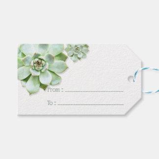Étiquettes-cadeau Mariage succulent vert luxuriant
