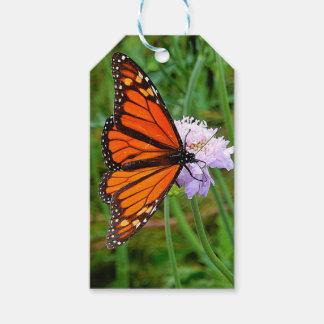 Étiquettes-cadeau Papillon alimentant sur une fleur