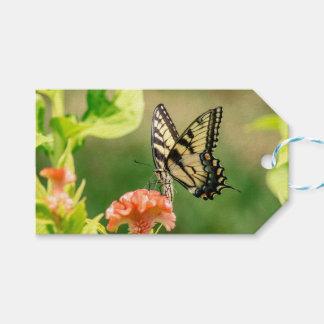 Étiquettes-cadeau Papillon oriental de machaon de tigre