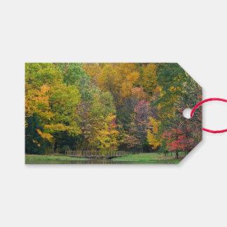 Étiquettes-cadeau Paysage d'automne du pont II d'automne de sept