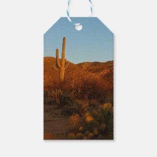 Étiquettes-cadeau Paysage de désert du coucher du soleil I Arizona
