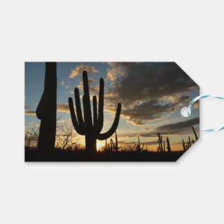 Étiquettes-cadeau Paysage de désert du coucher du soleil II Arizona