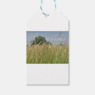 Étiquettes-cadeau Paysage d'été de champ sauvage dans la campagne