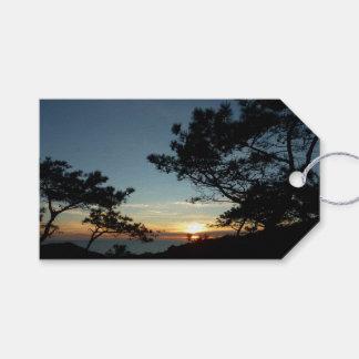 Étiquettes-cadeau Paysage du coucher du soleil III la Californie de