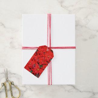 Étiquettes-cadeau Photo florale des poinsettias I de vacances rouges
