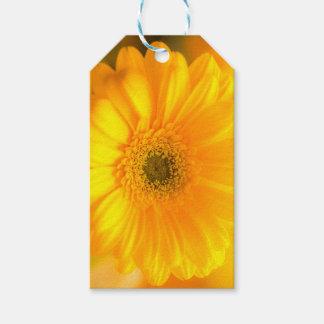 Étiquettes-cadeau Soleil