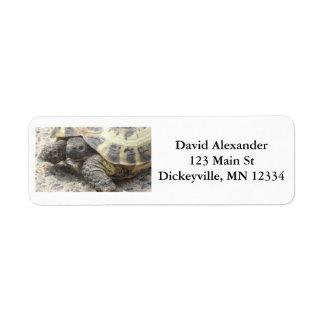Étiquettes de adresse de expédition de retour avec