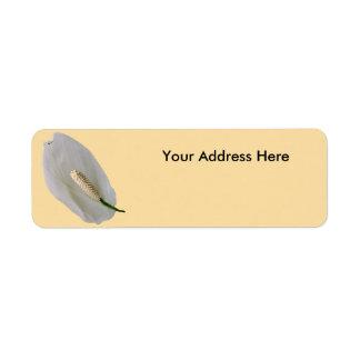 Étiquettes de adresse de expédition - Snowflower