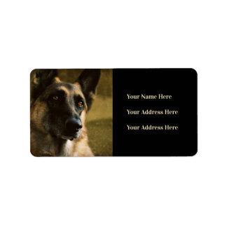 Étiquettes de adresse de photo de berger allemand